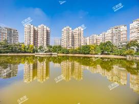 翠湖豪苑实景图