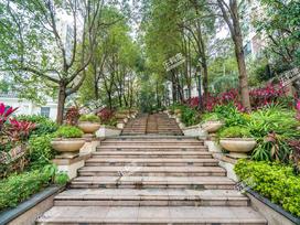 三正卧龙山花园实景图