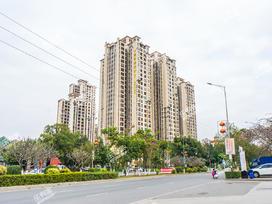 中惠香樟绿洲航拍