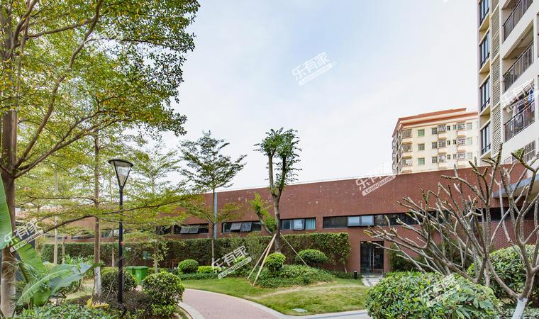 中惠松湖城31