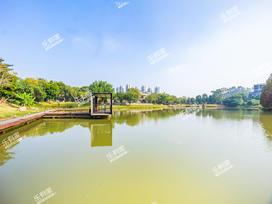 万科双城水岸实景图