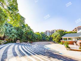 东泰花园实景图