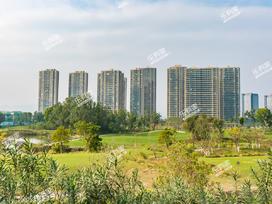 翠湖香山实景图