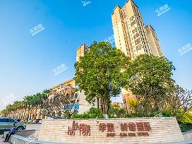 华策·岭峰国际二期实景图