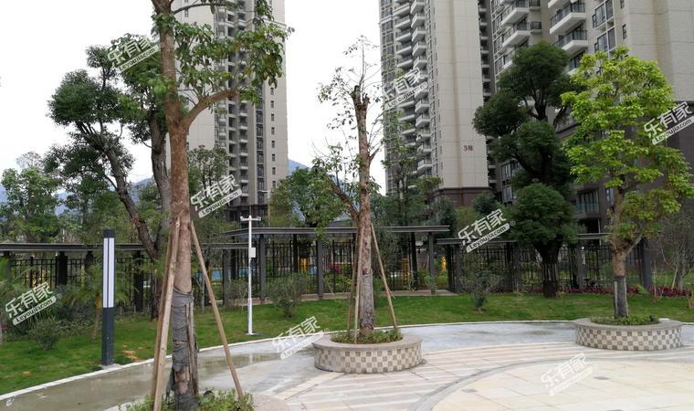 《华翠花园》小区实景图8