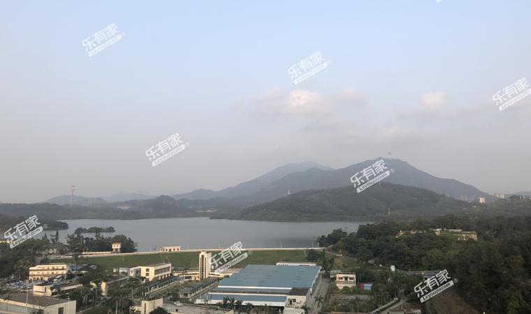 传麒东湖名苑实景图