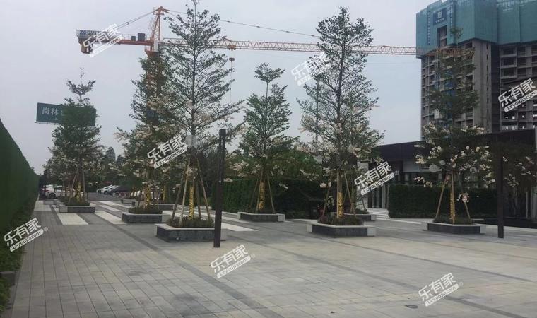 江门合景领峰花园02