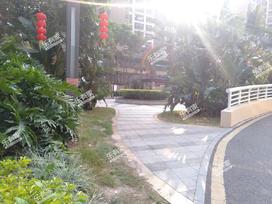 招商果岭花园实景图
