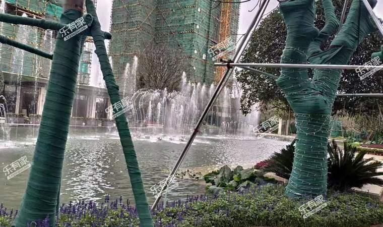 清荃湾花园实景图3