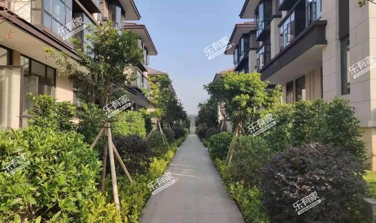 星汇翠峰实景图4