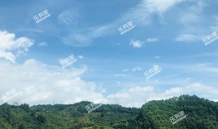 景业东湖洲豪园实景图4