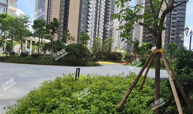 今日香沙御景园实景4