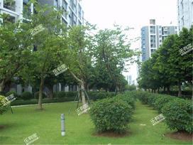 亚运城运动员村实景图