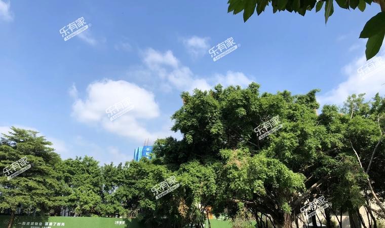 三盈广场实景图4