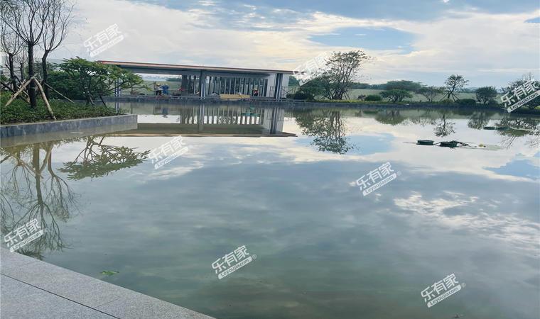 江畔明珠实景图2
