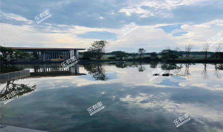 江畔明珠实景图1