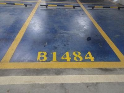 龙光棕榈水岸超笋车位出租-广州南沙龙光棕榈水岸租房