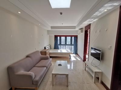 泛海城市广场精装公寓一房一厅,安静宜居高层看山景-深圳泛海城市广场租房