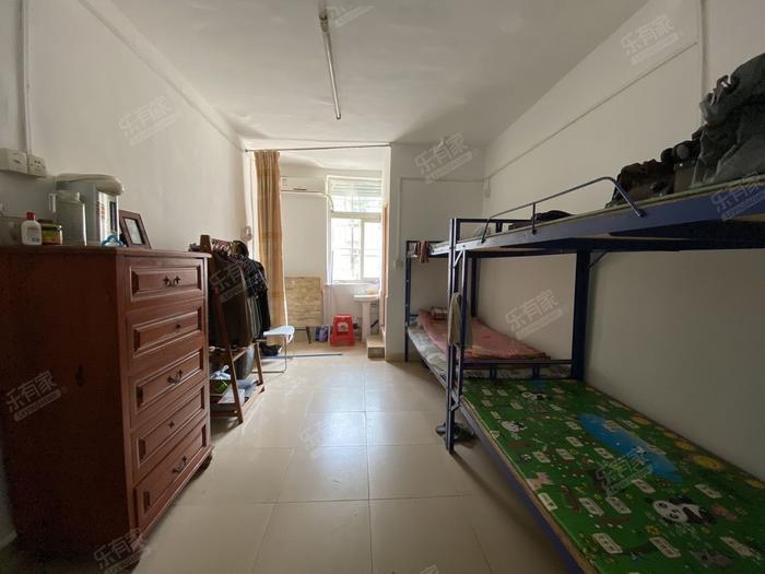 鹏基公寓(八卦岭)居室-1