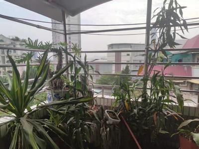世界花园樱花居顶楼复式诚意出租-深圳世界花园租房