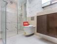 龙光玖钻厕所-1