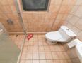 半岛城邦厕所-1