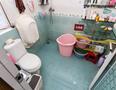 天朗风清厕所-1