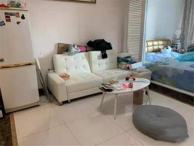 南山站精装1房,精装修,家私齐全可以直接入住-深圳向南瑞峰花园租房