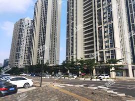 金地龙城中央二期实景图