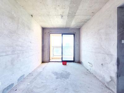 阳基御龙山2室2厅63.48m²方正长湖地铁口旁-深圳阳基御龙山二手房