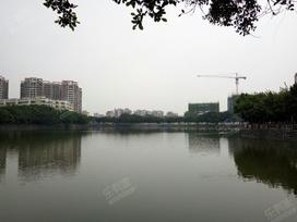悦湖苑实景图