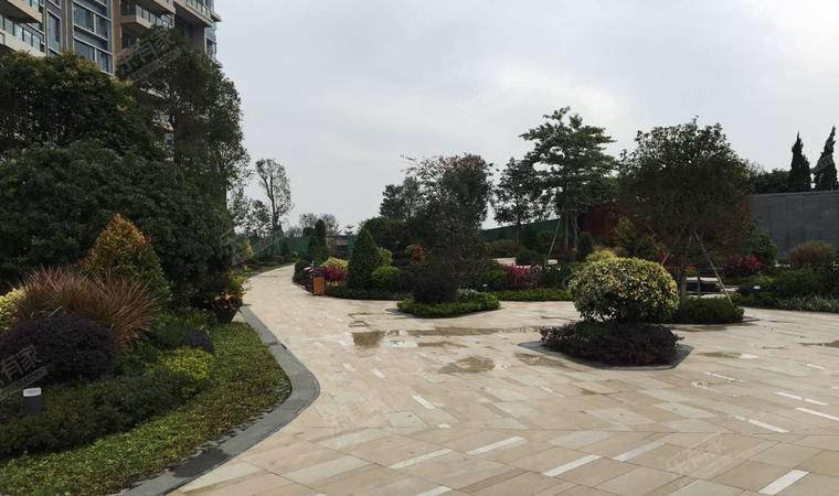 石龙奕翠园实景图