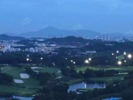 珠江观澜御景实景图