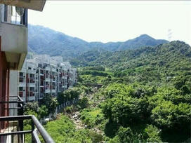 中海半山溪谷实景图