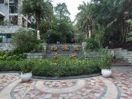 中海阳光玫瑰园实景图