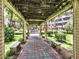 乐景花园实景图