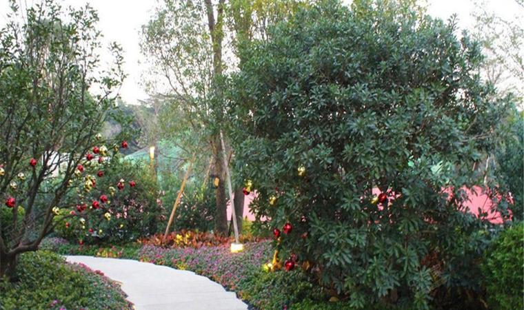 金色年华花园33
