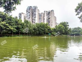 丽湖花园实景图