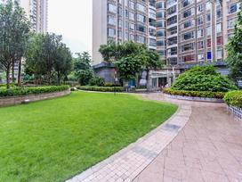 星河国际花园实景图
