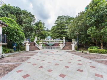 新亚洲花园