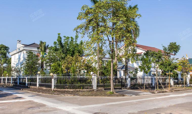 金沙花园自建别墅小区图片11
