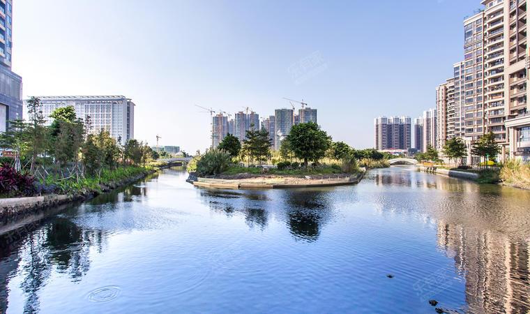 花海湾花园湿地公园2