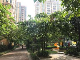 翠盈明珠花园实景图