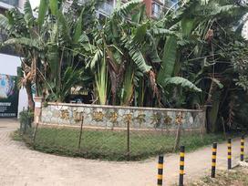 骏景高尔夫花园实景图