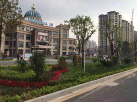 春晖国际花园实景图