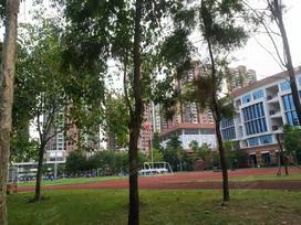 锦绣花园实景图