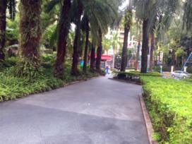 中旅国际公馆二期实景图