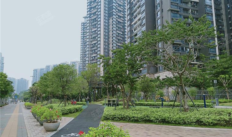 红山6979商业中心(一期)商务公寓实景图03