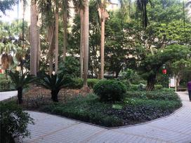 保利红棉花园实景图