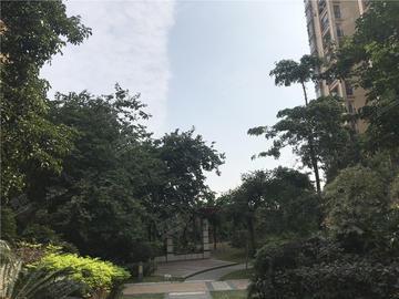 碧琴湾花园